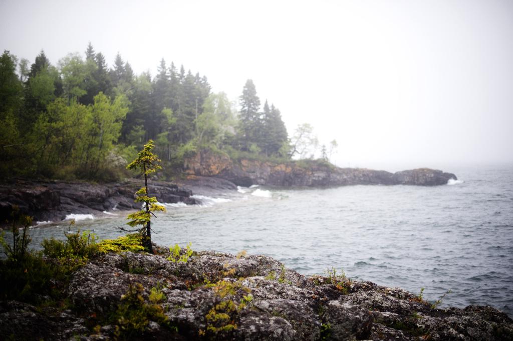 North Shore Beauty 4