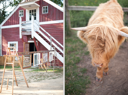 Gibbs Farm Wedding Photos 50