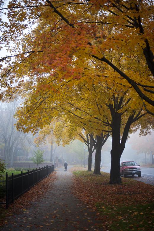 Foggy Saint Paul 1