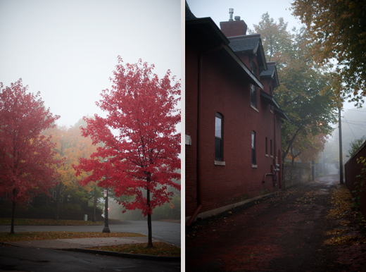Foggy Saint Paul 10