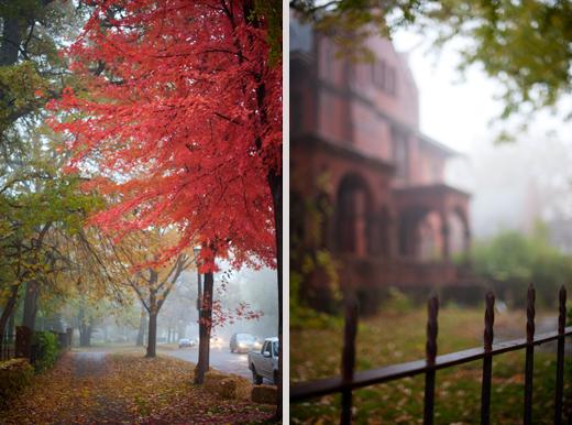 Foggy Saint Paul 6
