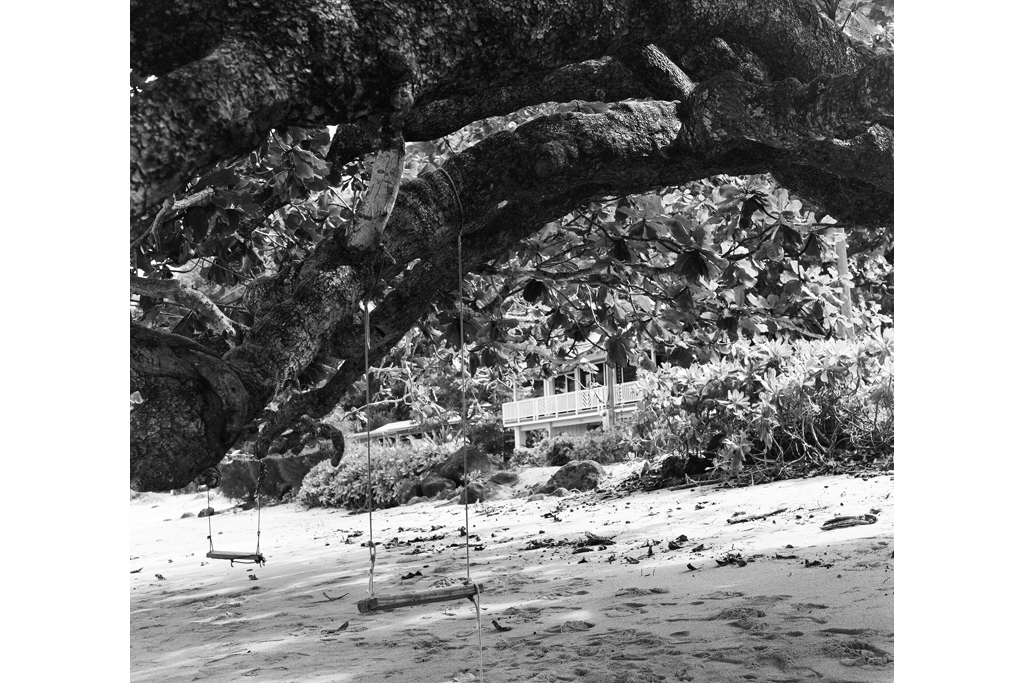Kauai swing