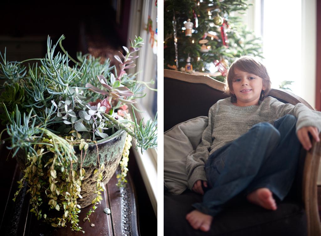 Minneapolis Mini Family Photo Session 9