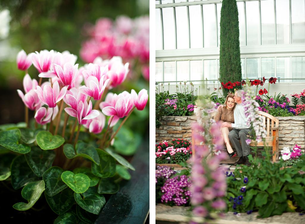 Como Park Conservatory Engagement Photos 11