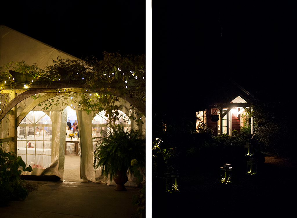 camrose-hill-wedding-photos-123