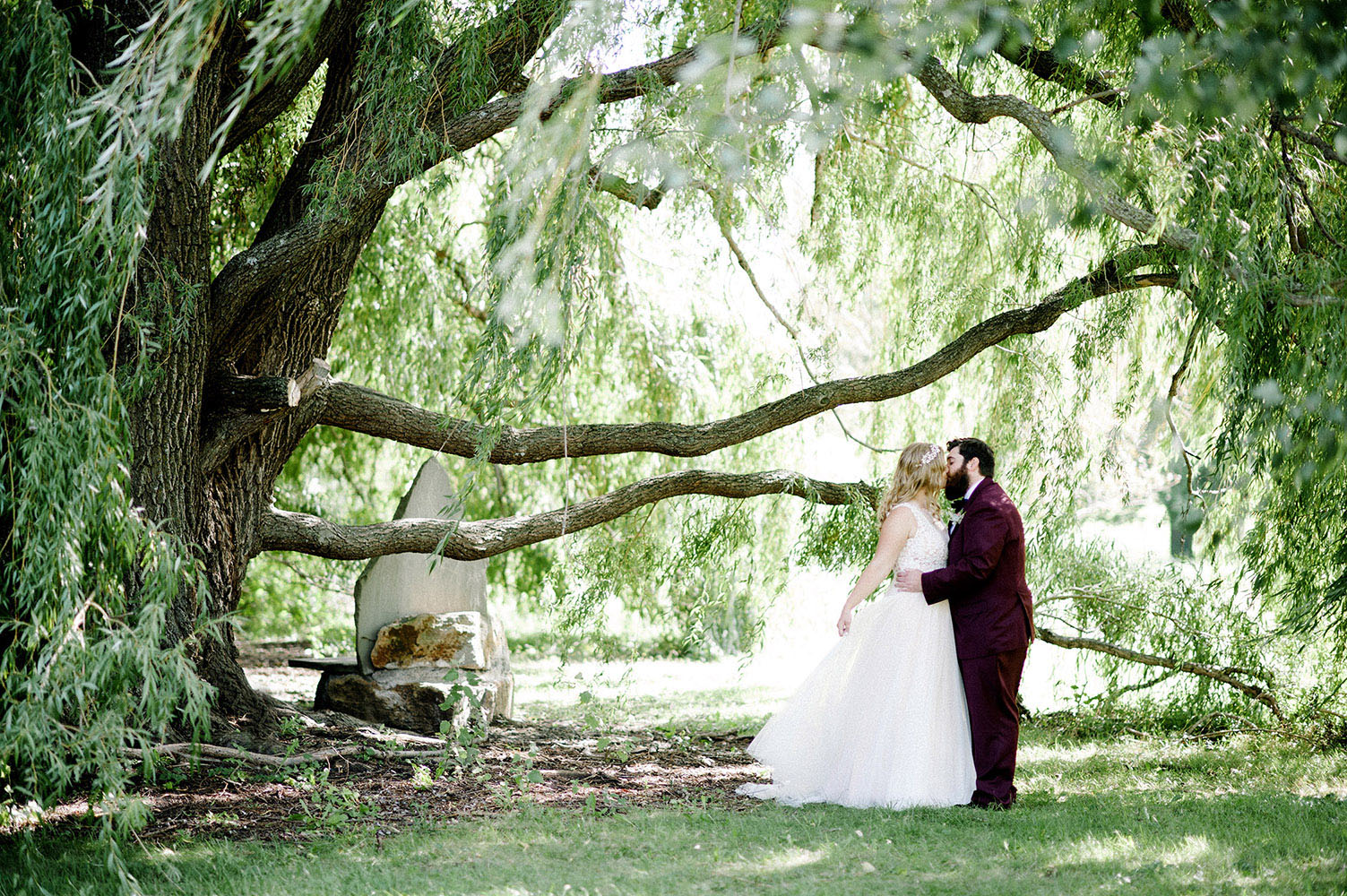 Bride and Groom under willow trees at the Minnesota Landscape Arboretum