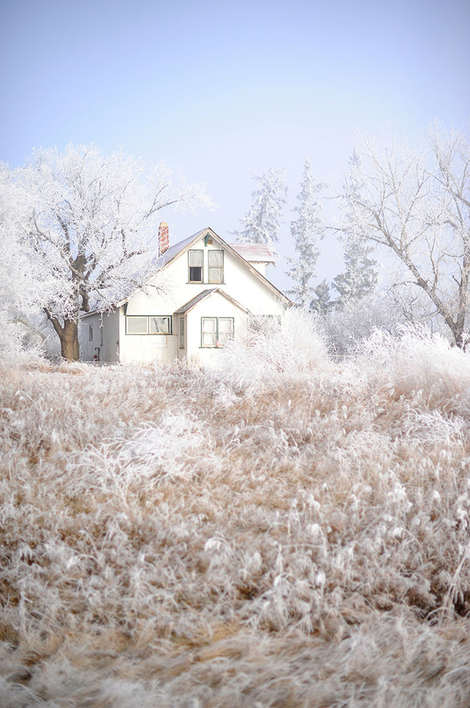 white house with frosty trees