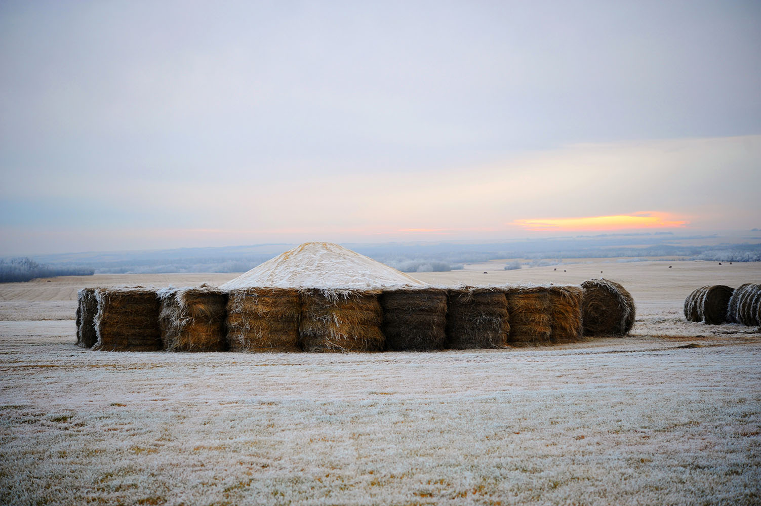frost on hay bales at sunset