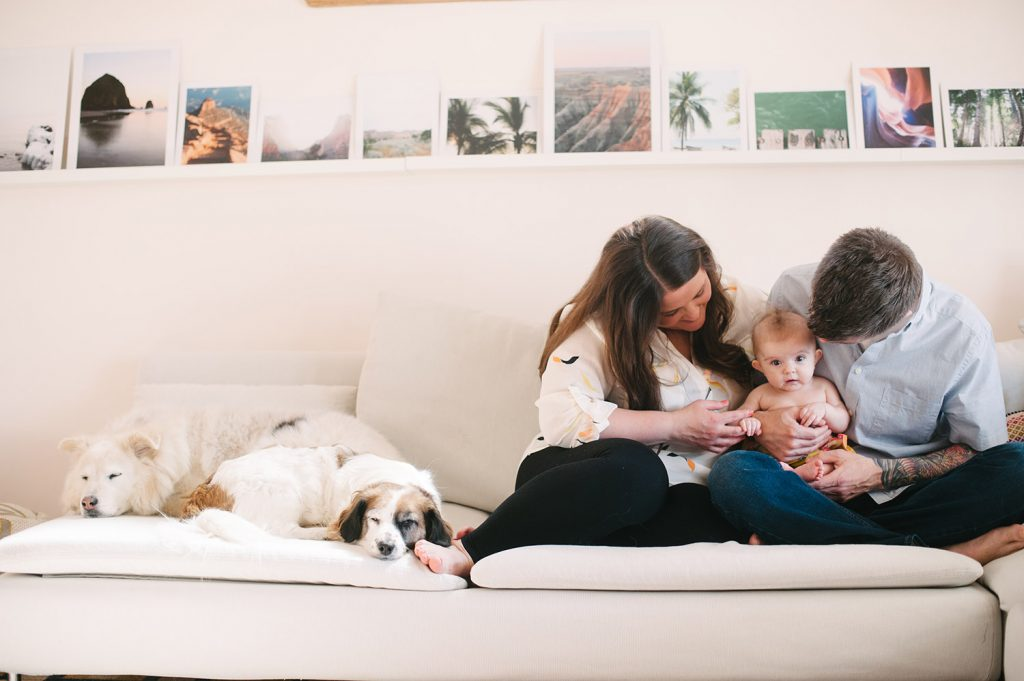 a couple and their baby on the couch with dogs